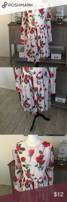 """Stunning Floral Dress Absolutely stunning floral dress. Perfect for a date night or Valentines Day. Tag states XXL but was made in Asia. Fits more a Large or XL. Waist measures at 33"""". Zip closure on back. There are three """"catches"""" in the skirt area from snagging on a belt in my closet but can only be found if actively looking for them. CANNOT TELL WHEN WEARING OR LOOKING AT DRESS. Length is 36"""" from shoulder. Dresses Long Sleeve"""