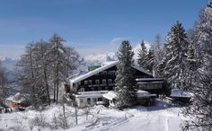 Tucked away up in the Alps, the Bio Hotel Grafenast has views most hotels can only dream of and ski slopes to satisfy the biggest thrill seekers. Not only this but it is also a health and beauty eco-resort, with various activities on offer. Bio Restaurant, Tirol Austria, Wooden Buildings, Ski Slopes, Europe, Hotel Reservations, Northern Italy, Holiday Destinations, Alps