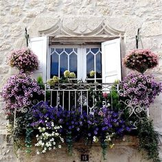 Charming Balcony Gardens Even if all your apartment has is a tiny Juliet balcony, you can still fill it with lots of plants!Even if all your apartment has is a tiny Juliet balcony, you can still fill it with lots of plants! Ventana Windows, Beautiful Gardens, Beautiful Flowers, Beautiful Places, Juliet Balcony, Balcony Flowers, Flowers Garden, Balkon Design, Garden Windows