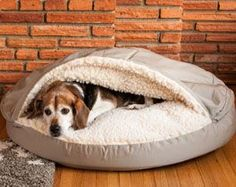 The Official Snoozer Pet Products Website. Manufacturer of Dog Beds, Dog Car Seats, Dog Carriers and Dog Sofas for years. For Dog People. By Dog People. Cozy Cave Dog Bed, Dog Line, Orthopedic Dog Bed, Dog Car Seats, Cool Dog Beds, Hamster, Pet Beds, Your Dog, Doge