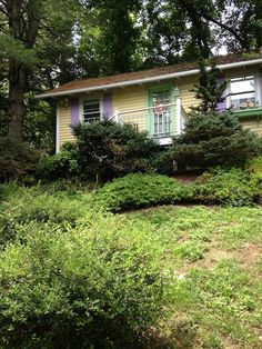 """in Lexington, US. Our beautiful little Cottage 2 miles from downtown. Wonderfully decorated with king size daybed, flat screen TV, fully equipped kitchen, large bath,Wifi, patio with outdoor fireplace """"wood included"""" and 12 x 12 deck. Nestled under trees on a quiet..."""