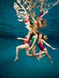 Image result for aqualillies