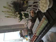 Dessert bar for Jessica's birthday. Macaroons, cookies, and cake pops oh my!