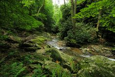 11 serene places to go hiking in Lancaster, Pennsylvania