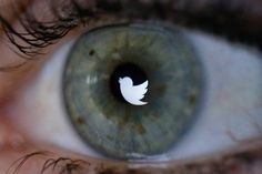 Twitter is a hotbed for starting—and busting—rumors.