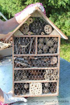 Back Gardens, Outdoor Gardens, Bug Hotel, Garden Nursery, Fungi, Bird Houses, Garden Inspiration, Diy And Crafts, Flora