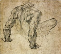 I've chosen some less familiar drawings by Michelangelo. So many drawings. Human Anatomy Drawing, Guy Drawing, Life Drawing, Drawing Sketches, Art Drawings, Michelangelo, Photos Corps, Figure Drawing Reference, Renaissance Art
