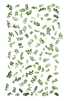 vetch leaf pattern (mary jo hooffman)