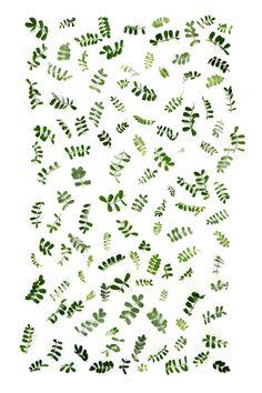 vetch leaf pattern  (mary jo hooffman)
