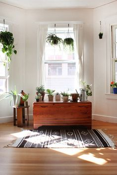 I really like this look. A cedar chest covered with plants; White walls and hardwood floors with white sheer curtains are neutrals in the space. I like the Navajo style rug as well.