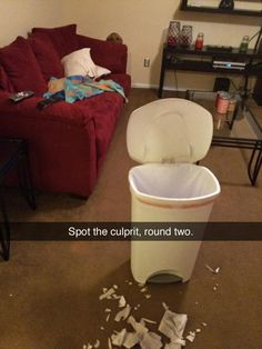 Funny Pictures Of The Day - 38 Pics