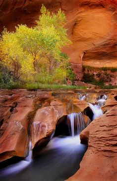 Coyote Gulch, Utah. | Stunning Places #Places