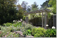 Golden Gate Park Botanical Garden, San Francisco.