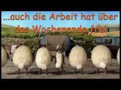 """Ich wünsche Euch ein """"Schönes Wochenende"""" - YouTube"""