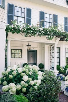 white house with hydrangeas and climbing roses!