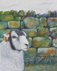 Watercolour sheep in Derbyshire.
