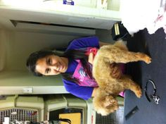 66 Best Friend And Companion Pet Grooming And Teaching Academy