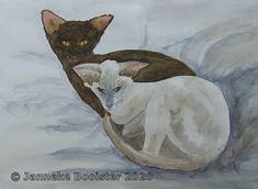Titanium White, Indigo, Van, Colours, Watercolor, Yellow, Pictures, Painting, Atelier