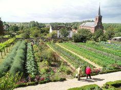 923 Best Edible Landscaping Images Edible Garden