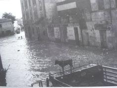 inundacion de vallecas, calle real arganda Foto Madrid, San Bernardo, Timeline, Painting, Google, Cities, Historia, Fotografia, Past Tense