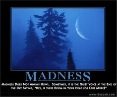 """Madness; madness does not always howl, sometimes it is the quiet voice at the end of the day saying, """"hey, is there room in your head for one more?"""""""