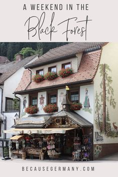 A guide to Germany's Black Forest region: the most charming towns, hikes, fun things to do, and where to eat the most delicious Black Forest cake! Perth, Brisbane, Melbourne, Places To Travel, Travel Destinations, Places To Visit, Cairns, Dream Vacations, Vacation Spots
