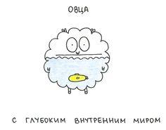 20 комиксов о самой милой овце-мизантропе в мире – Фитнес для мозга