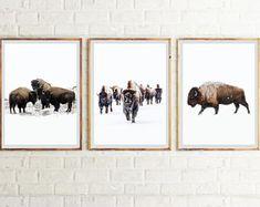 Bison Set of 3 Winter Animals Print Buffalo Nursery Woodland Animal Set Buffalo Set of 3 Poster Bison Photography Bison Printable Wall Art Woodland Nursery, Woodland Animals, Nature Posters, Coastal Wall Art, Nursery Art, Girl Nursery, Printable Wall Art, Wall Art Prints, Bison