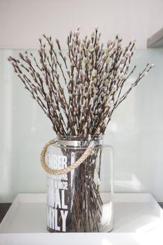 Gåsunger, lange stilker. Gjør seg godt i en gjennomsiktig vase slik som på bildet, og i en høy, grå Omaggio vase fra Kähler.
