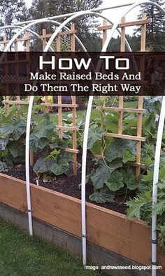 How To Make Raised Beds And Do Them The Right Way