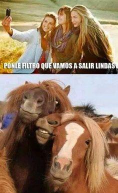 Sin Filtro Y Con Filtro #ImagenDelDia