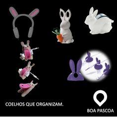 #organize com coelhos.