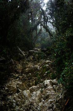 Doom. Inka Trail, Peru. Shot and edit by Monica Mikhael. https://flic.kr/p/nQeL8x