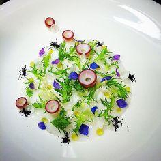 """Octopus Carpaccio"" . ☺️ . #octopus #carpaccio #タコ #カルパッチョ #シーフード #lovefish #fresh #fishlover #kresios #tadashitakayama #seafood #theartofplating #gastroart #chefsofinstagram #chefstalk #dontshootthechef #foodstarz #hipsterfoodofficial #オリーブ"