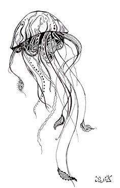 медуза графика - Поиск в Google