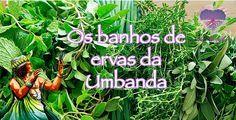 Banhos de ervas na umbanda - Na umbanda e o sangue vegetal que na forma de banhos nos purifica e consagra. Quem for banhado por ela espanta os males fisicos e espirituais. -Pesquisa Google