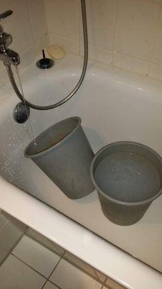 So spare ich Tausende Liter Wasser jährlich