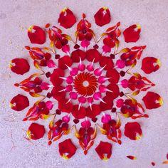 Danmala by Kathy Klein