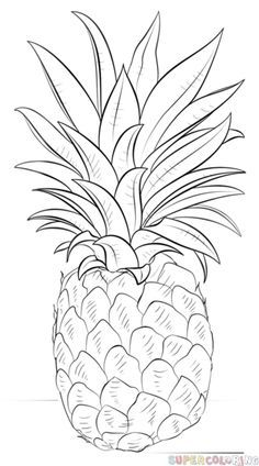 How to draw a pineapple step by step. Drawing tutorials for kids and beginners.