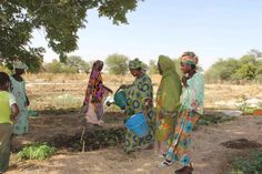 Most Malians are self employed. Many make a living as farmers, herders, fishermen, traders, or artisans.Most of the salaried positions are with international organizations or civil service.  Many Malians choose to emigrate in search of better job opportunities.