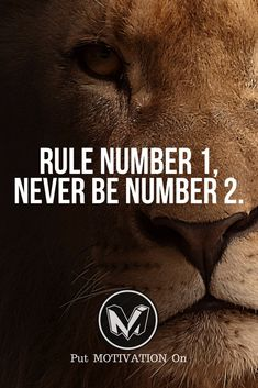 Never be Number 2. Follow all our motivational and inspirational quotes. Follow the link to Get our Motivational and Inspirational Apparel and Home Décor. #quote #quotes #qotd #quoteoftheday #motivation #inspiredaily #inspiration #entrepreneurship #goals #dreams #hustle #grind #successquotes #businessquotes #lifestyle #success #fitness #businessman #businessWoman #Inspirational