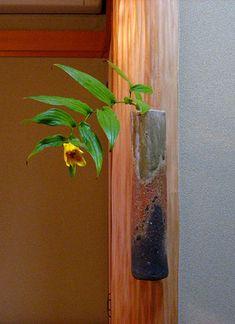 秋の茶花:茶花と山野草:So-netブログ