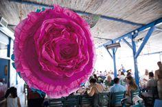 pink rose piniata