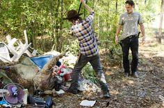 Carl killing a walker