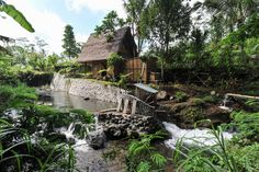 House in Selat, Indonesia. Hideout is a unique eco stay for adventurous travelers, hidden in mountains of Gunung Agung volcano. All-bamboo house is situated at beautiful riverside among rice fields. Get off the grid and experience authentic life of Balinese village.  The Hi...