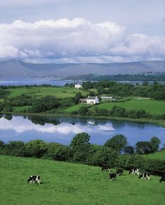 Bantry Bay, County Cork, Ireland #Christmas #thanksgiving #Holiday #quote