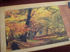Autumn Trees. 1,000 pieces. March 2014. March 2014, Autumn Trees, Jigsaw Puzzles, Painting, Art, Fall Trees, Art Background, Painting Art, Paintings