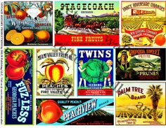 Fruit Crate Labels Huge Digital Set 5 Files  by RarePaperDetective