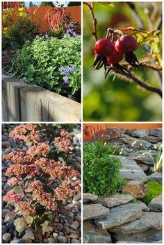 the Garden. Jeśli podoba się Wam nasz styl i chcielibyście stworzyć u siebie podobną oazę, to chętnie pomożemy. Wykonujemy proje...