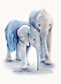 The David Sheldrick Wildlife Trust - Art Store